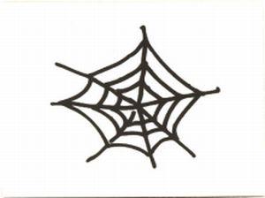 spinnennetz-gross